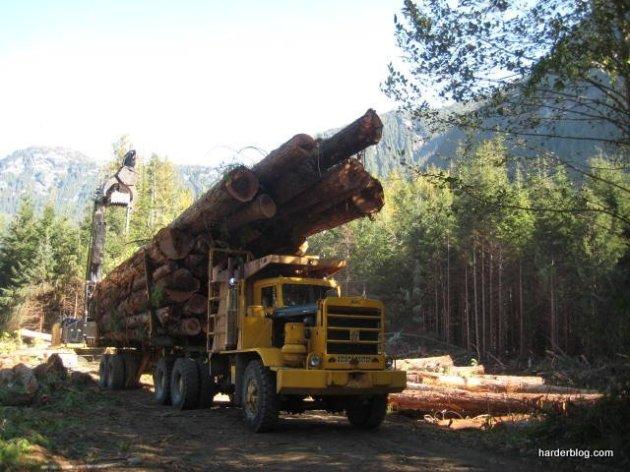 logging truck-001