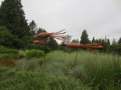 """""""Giant Squid"""" - by Paul Burke"""