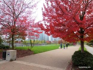 Autumn Seawall