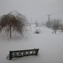 Snow- Feb 14 2014 002