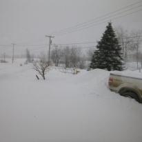 Snow- Feb 14 2014 003